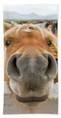 Silly Icelandic Horse Beach Towel