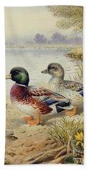 Silver Call Ducks Beach Towel by Carl Donner