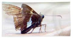 Silver Spotted Skipper Butterfly Beach Towel