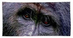 Silverback In The Wild Beach Towel by Michael Cinnamond