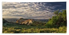 Simi Valley Overlook Beach Sheet by Endre Balogh