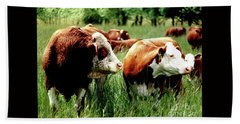 Simmental Bull And Hereford Cow Beach Sheet by Larry Campbell