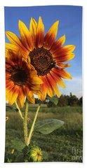 Sunflower  Beauty Beach Sheet