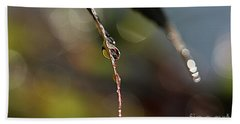 Beach Towel featuring the photograph Simple Droplet by Yumi Johnson