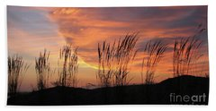 Beach Towel featuring the photograph Simple Joys by Chris Anderson