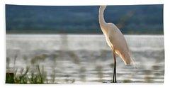 Singing White Egret Beach Towel