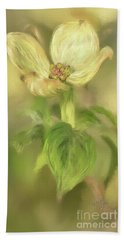 Beach Towel featuring the digital art Single Dogwood Blossom In Evening Light by Lois Bryan