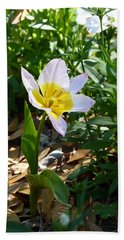 Beach Towel featuring the photograph Single Flower - Simplify Series by Carla Parris