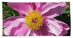 Single Pink Peony Beach Towel