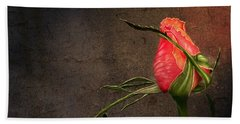 Single Rose Beach Towel by Ann Lauwers