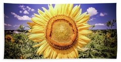 Beach Towel featuring the photograph Single Sunflower by Jim DeLillo