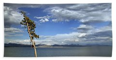 Single Tree - 365-359 Beach Towel