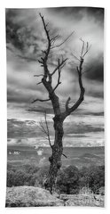 Single Tree In Black And White Beach Towel