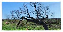 Single Tree Over Narrow Path Beach Sheet