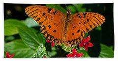 Sipping Gulf Fritillary Beach Sheet by Kenneth Albin