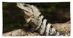 Sir Iguana Mexican Art By Kaylyn Franks Beach Towel