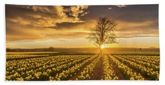 Beach Sheet featuring the photograph Skagit Valley Daffodils Sunset by Mike Reid