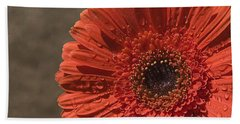 Skc 5127 The Heart Of The Gerbera Beach Towel by Sunil Kapadia