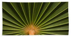 Skc 9959 The Palm Spread Beach Towel by Sunil Kapadia