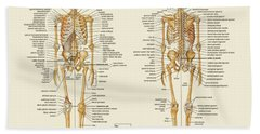 Skeletal Anatomy Beach Sheet by Gina Dsgn