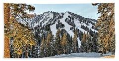 Ski Runs Beach Sheet