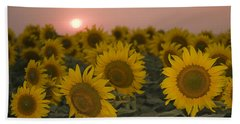 Skn 2178 The Sunflowers At Sunset  Beach Towel by Sunil Kapadia