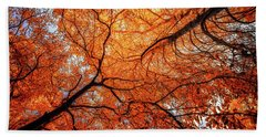 Sky Roots In Forest Red Beach Towel