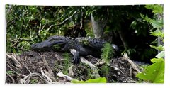 Sleeping Alligator Beach Sheet