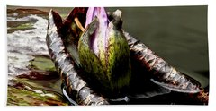 Sleeping Beauty In Water Lily Pond Beach Towel by Carol F Austin