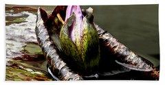 Sleeping Beauty In Water Lily Pond Beach Sheet by Carol F Austin