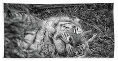 Sleeping Tiger Beach Towel