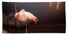Sleepy Flamingo Beach Towel