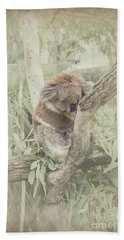 Sleepy Koala Beach Sheet