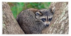 Sleepy Raccoon Sticking Out Tongue Beach Towel