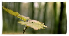Small Branch With Yellow Leafs Close-up Beach Sheet by Vlad Baciu