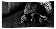 Beach Towel featuring the photograph Small Turtle Exploring The Surroundings by Eduardo Jose Accorinti