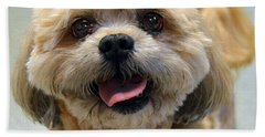 Smiling Shih Tzu Dog Beach Sheet