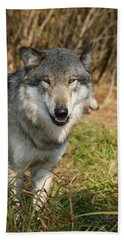 Smiling Wolf Beach Towel