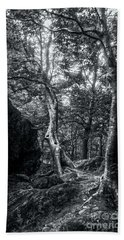 Beach Towel featuring the photograph Smugglers' Notch Vermont Trees And Roots 5 by James Aiken