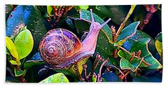 Snail 5 Beach Towel