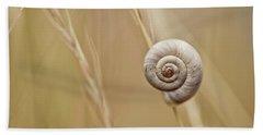 Snail On Autum Grass Blade Beach Towel