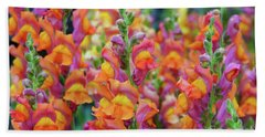 Snapdragon Rainbow Beach Towel