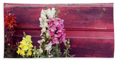 Snapdragons And Red Door Beach Sheet