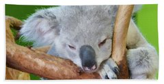 Snoozing Koala Bear Beach Towel