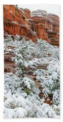Snow 06-051 Beach Towel by Scott McAllister