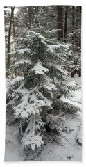 Snow Covered Evergreen Beach Towel