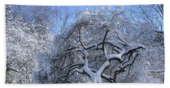 Beach Towel featuring the photograph Snow-covered Sunlit Apple Trees by Byron Varvarigos