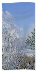 2a357 Snow Covered Trees At Alum Creek State Park Beach Towel