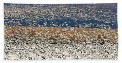 Beach Towel featuring the photograph Snow Geese At Willow Point by Lois Bryan