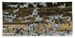 Snow Geese Flock In Flight Beach Towel